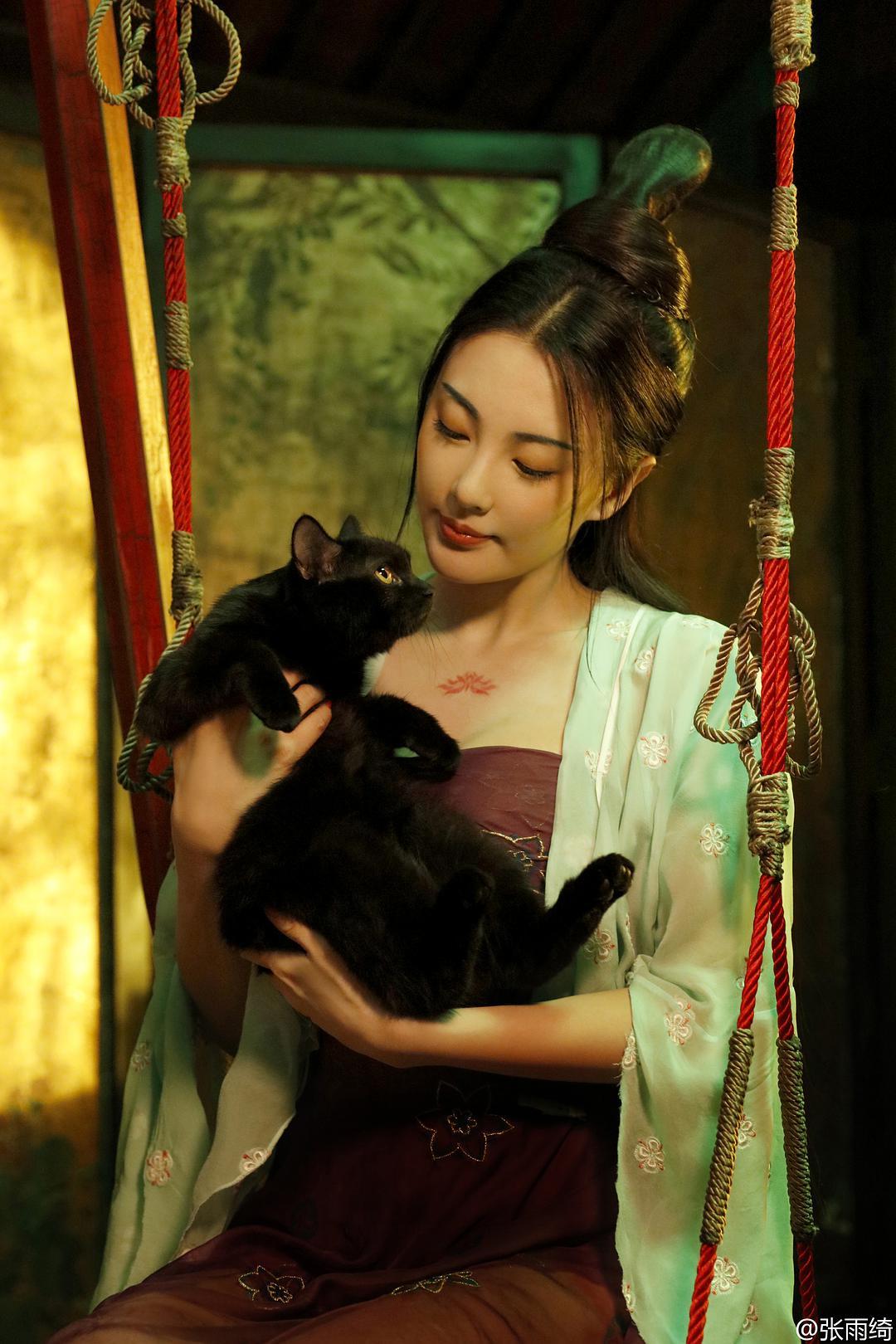 《妖猫传》再现大唐盛世,免费在线观看完整版攻略